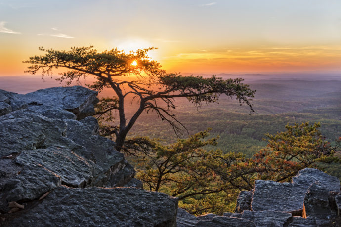 Explore Gorgeous Destinations in Alabama from the Comfort of Your RV