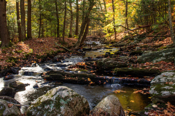 Blissful Vacation Spots to Check Out in Connecticut